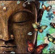 Meditation: Raise Your Vibe, Change Your Life